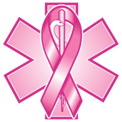 Picture of PowerDecal  Breast Cancer Ribbn Powerdecal FFPWR007 03-1640