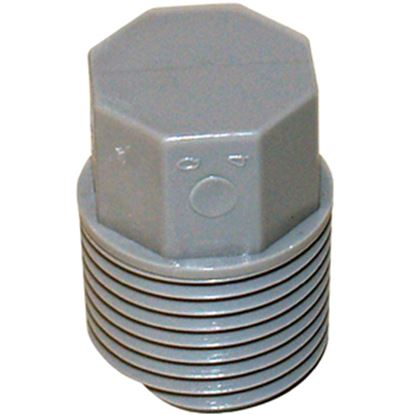 "Picture of QEST Qicktite (R) 1/2"" MPT Gray Acetal Test Plug  10-3160"