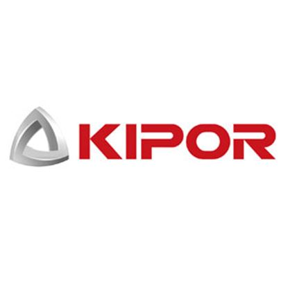 Picture of Kipor  Gasoline Generator Fuel Filter KGE12E-11010 48-0084