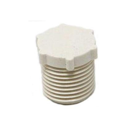 """Picture of Lasalle Bristol QEST Gray Plastic 1/2"""" FPT Test Plug Pipe Fitting 79SCTP3 69-6039"""